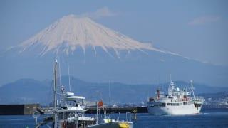 駿河湾と富士山(焼津港)