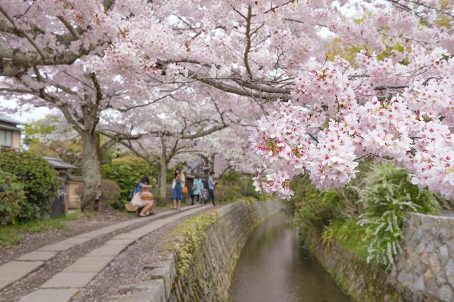 京都府京都市哲学の道