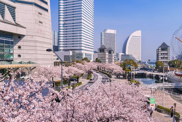 神奈川県横浜市みなとみらい