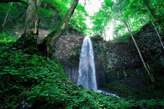 幻の滝ツアー