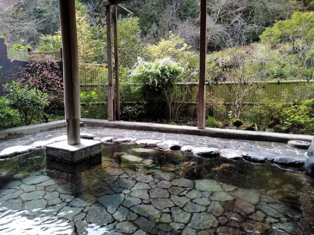 箱根つたや旅館温泉10