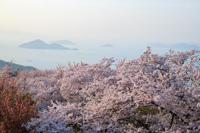 香川県三豊市紫雲出山
