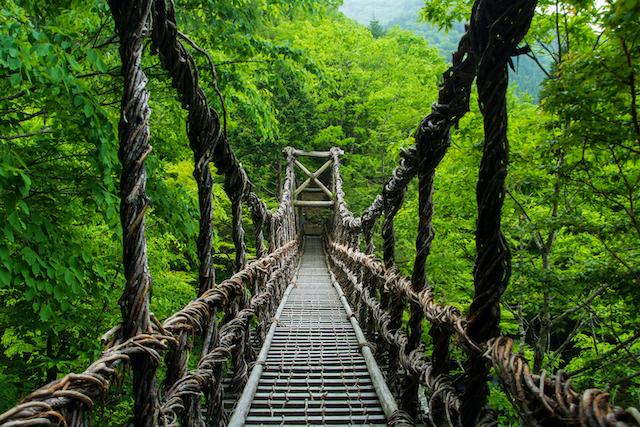 徳島県祖谷かずら橋