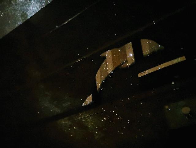 千葉・浦安「シェラトン・グランデ・トーキョーベイ・ホテル」シェラトン・グランピング with ノルディスク「星空キャンプルーム・プラン」客室のイルカにプラネタリウムを投影