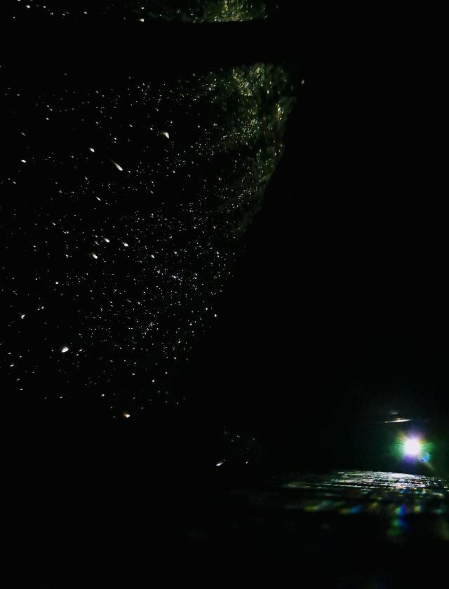 千葉・浦安「シェラトン・グランデ・トーキョーベイ・ホテル」シェラトン・グランピング with ノルディスク「星空キャンプルーム・プラン」プラネタリウムの光とテントの星