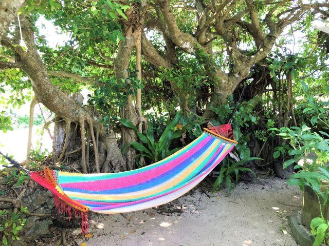 【八重山諸島・黒島】海や牧場を眺めながら、豊かな自然の中でまったり過ごせるカフェ2選