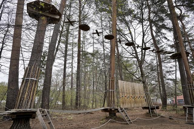 森の空中散歩