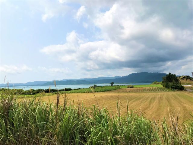西表島を望む