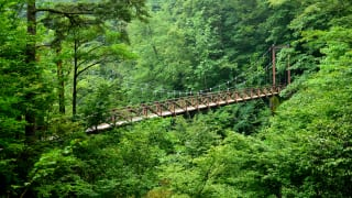 東京都西多摩郡大滝の路