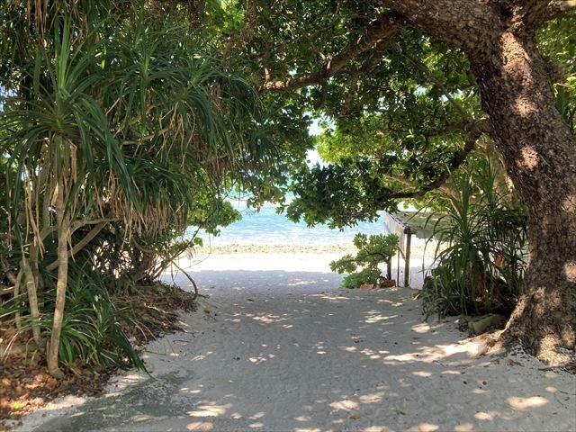 カイジ浜へ続く道