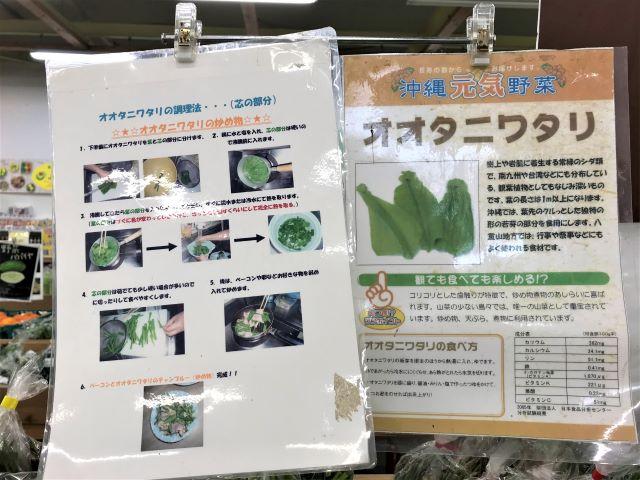 オオタニワタリ レシピ