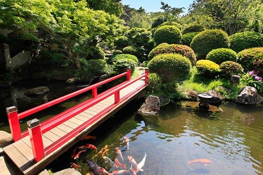 4,000坪の日本庭園