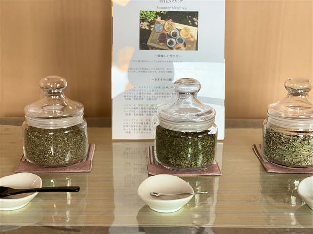 界 遠州 朝涼み茶
