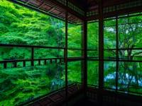 京都府京都市瑠璃光院