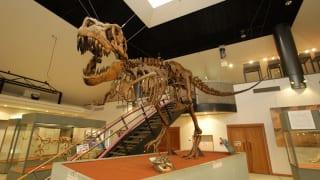 群馬県神流町恐竜センター