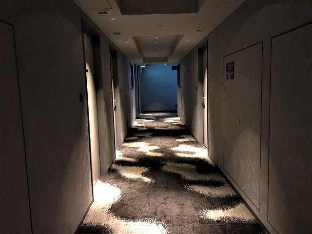 ザ ロイヤルパーク キャンバス 京都二条 廊下