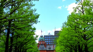 北海道札幌市北3条広場2