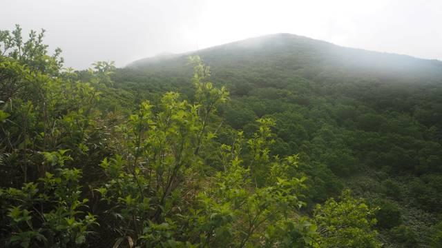 山頂は雲のなか