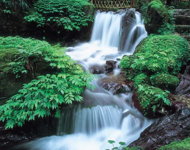 瓜割の滝(福井県)