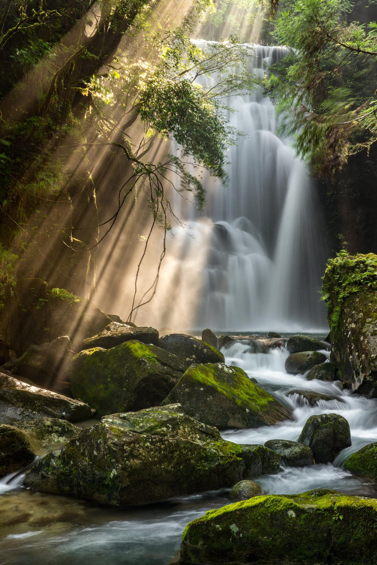 桑ノ木の滝(和歌山県)