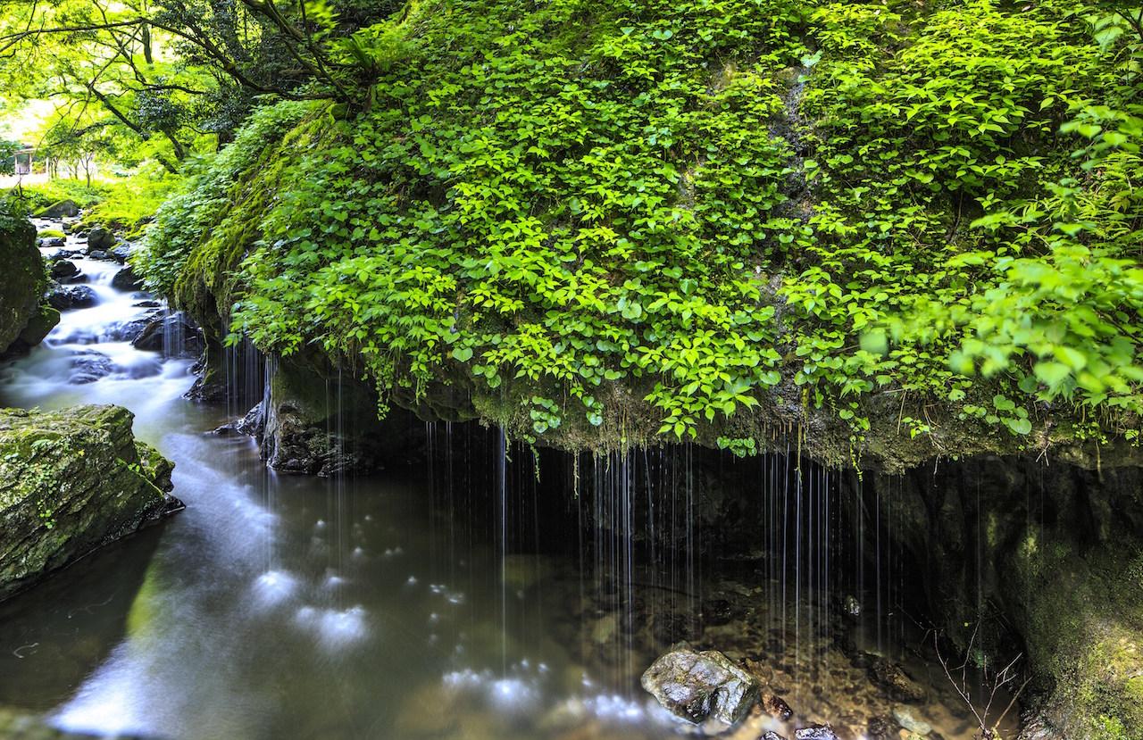 【涼を呼ぶ夏の絶景】中国地域の美しい滝5選