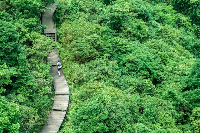 香港・昂坪360に沿った道を登る人