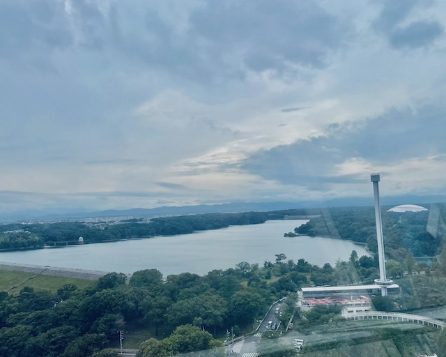 西武園ゆうえんち19観覧車からの眺め