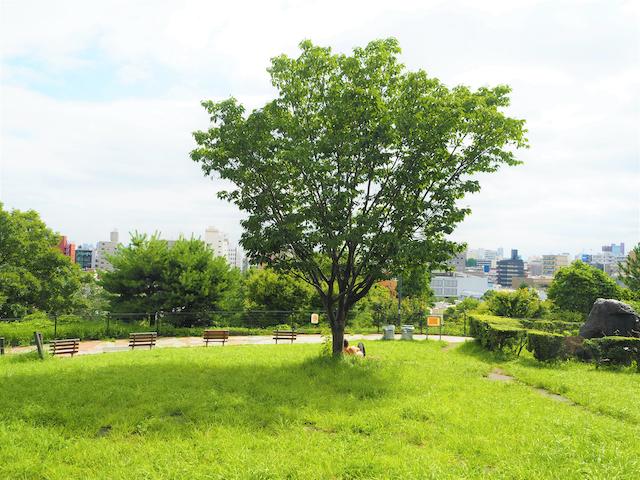 東京都目黒区西郷山公園