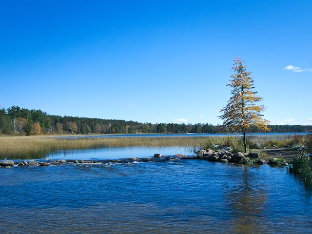 アメリカ・ミシシッピ川イタスカ湖