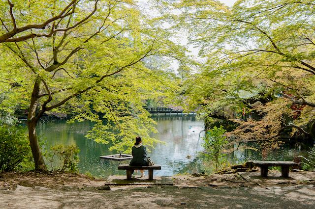 東京都武蔵野市井の頭公園