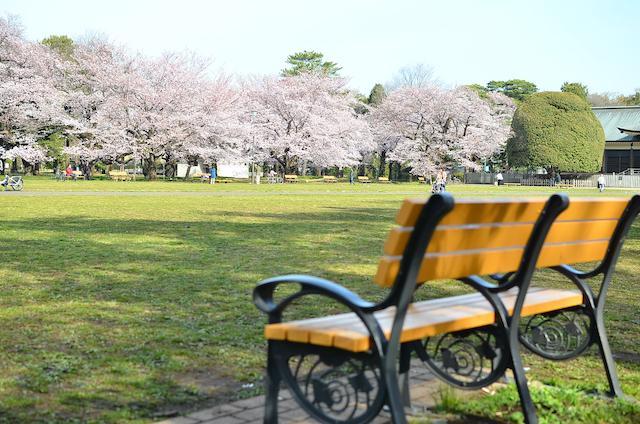 東京都小金井市小金井公園
