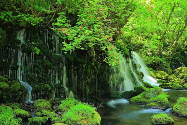秋田県にかほ市元滝伏流水