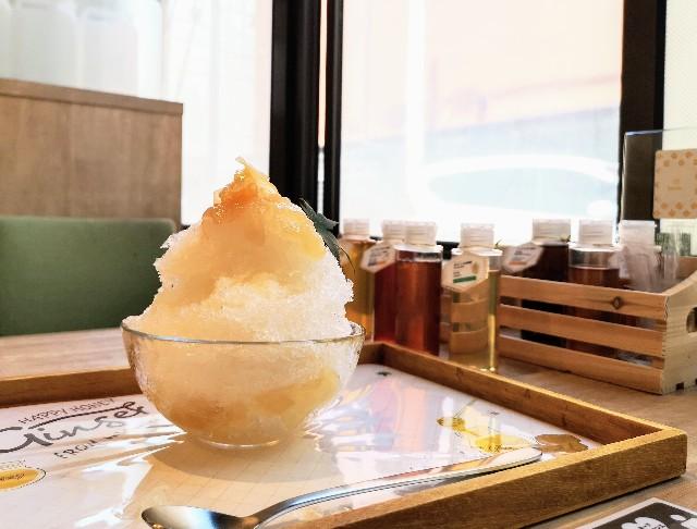京都府京都市・蜂蜜専門店「ミールミィ三条本店」自家製蜂蜜のかき氷(ハニージンジャー)2