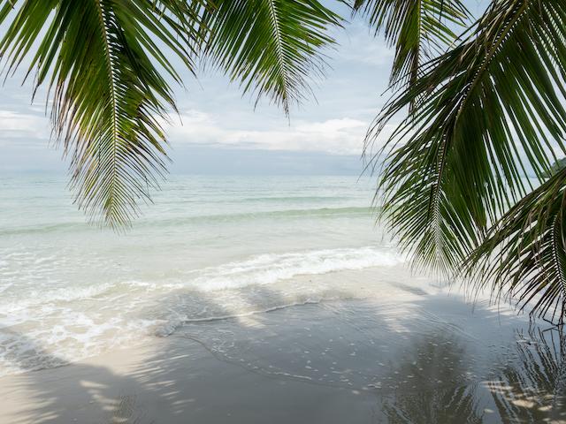 夏の海のイメージ