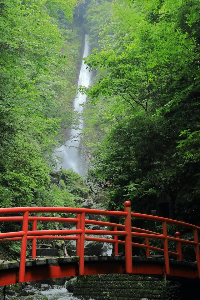 神奈川県山北町酒水の滝