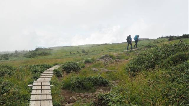 山頂の湿原へ