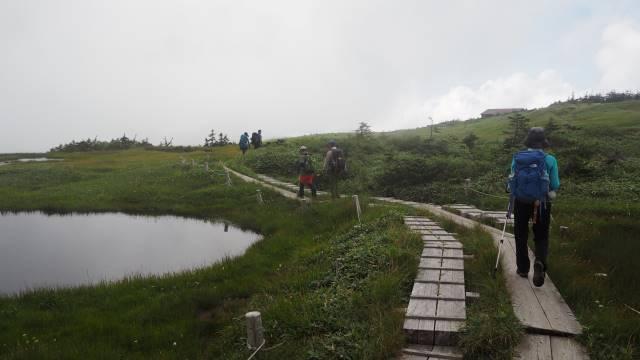 湿原の木道歩き