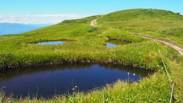 池塘の向こうの丘
