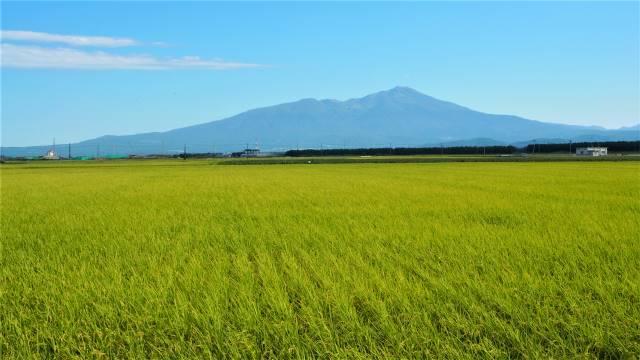 庄内から見る鳥海山