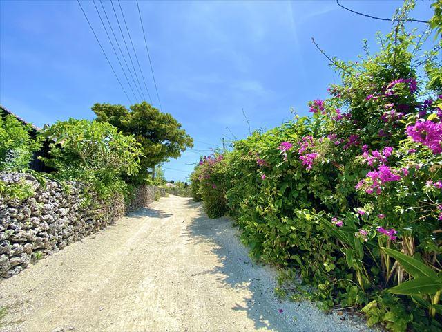竹富島 島内観光