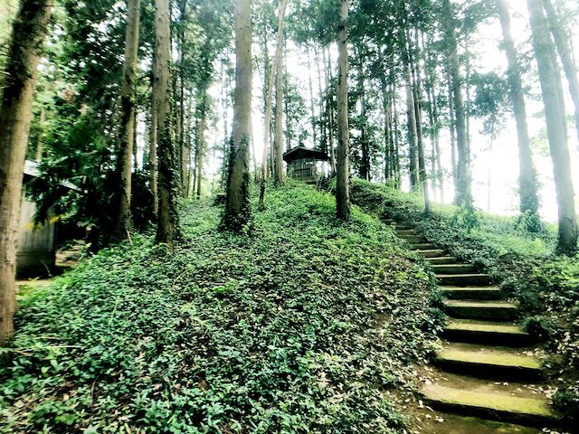 日本列島ゆるゆる古墳ハント30茨城県水戸市牛伏古墳群とくれふしの里古墳公園8
