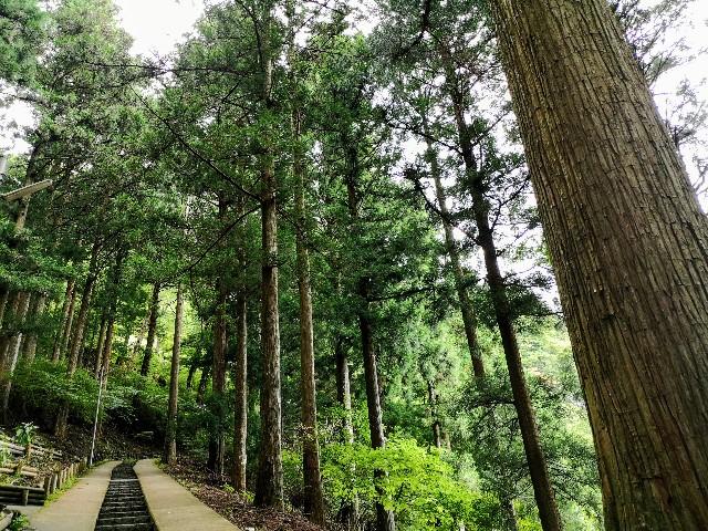奈良県吉野郡・「面不動鍾乳洞」への道