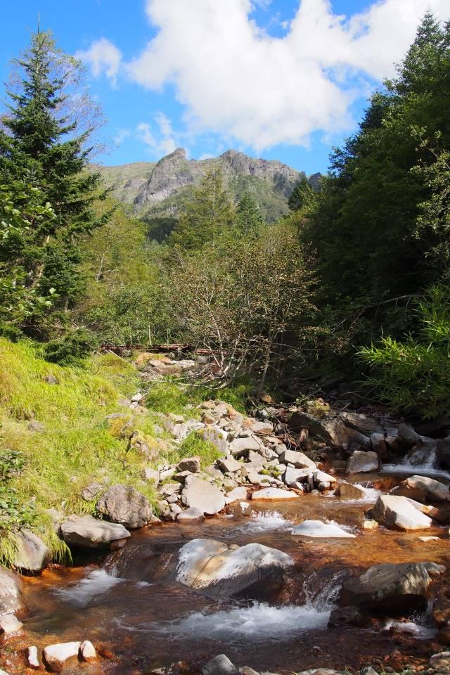 渓流と八ヶ岳