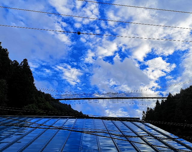 奈良県吉野郡・「花あかりの宿 柳屋」お部屋の窓辺からのかりがね橋