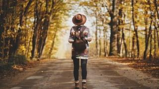秋の紅葉旅イメージ