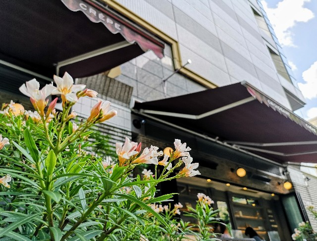 東京都豊島区・「ジェラート ピケ カフェ クレープリー ルミネ池袋店」外観