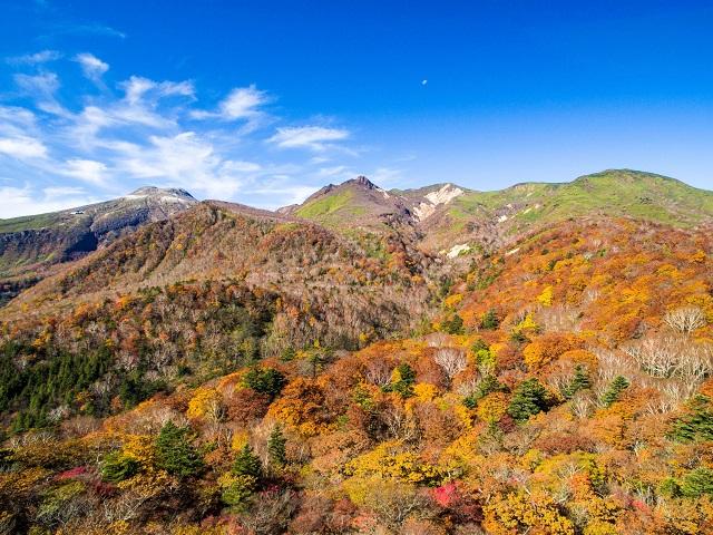 紅葉が見頃に!色づく那須高原を「紅葉那須ゴンドラ」から楽しむ