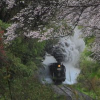 熊本県SL人吉