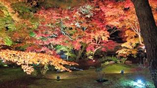 京都府京都市宝厳院庭園